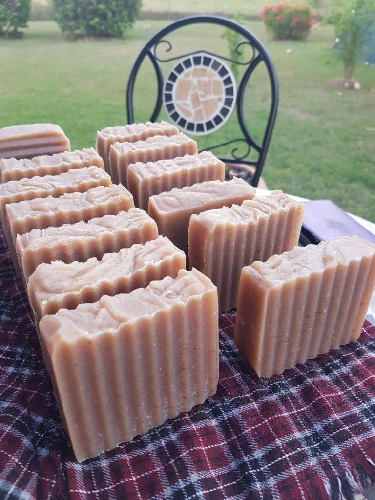 Homemade Coconut Aloe Vera Soap Recipe- Cold Process
